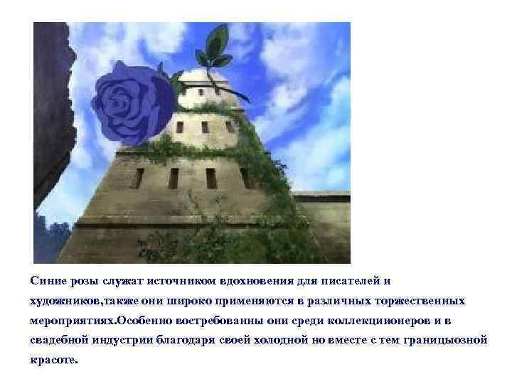 Синие розы служат источником вдохновения для писателей и художников, также они широко применяются в