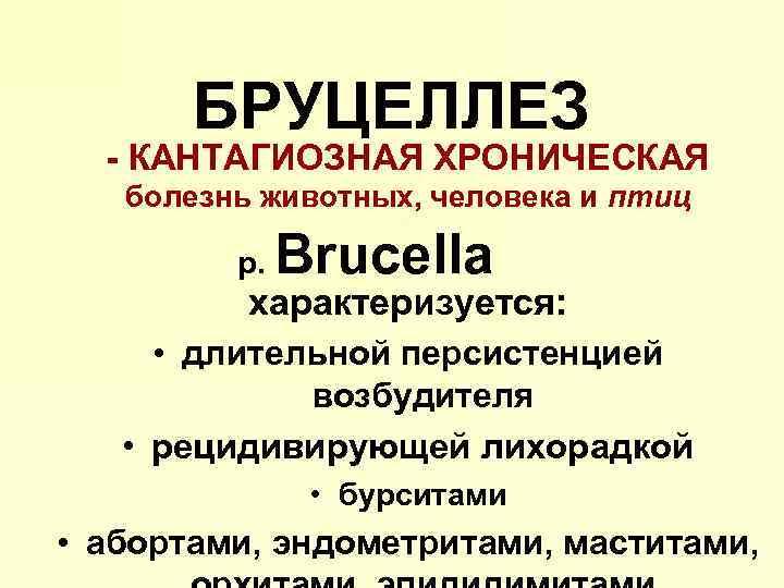 БРУЦЕЛЛЕЗ - КАНТАГИОЗНАЯ ХРОНИЧЕСКАЯ болезнь животных, человека и птиц р. Brucella характеризуется: • длительной