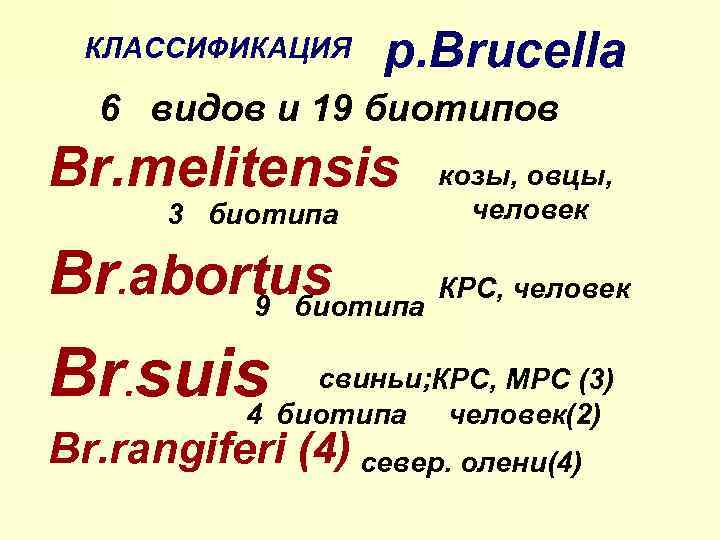 КЛАССИФИКАЦИЯ р. Brucella 6 видов и 19 биотипов Br. melitensis 3 биотипа козы, овцы,