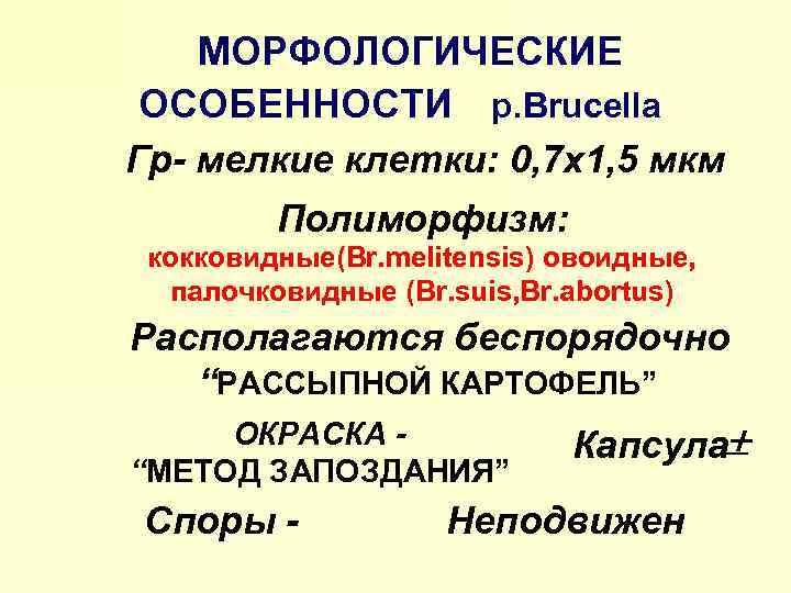 МОРФОЛОГИЧЕСКИЕ ОСОБЕННОСТИ р. Brucella Гр- мелкие клетки: 0, 7 х1, 5 мкм Полиморфизм: кокковидные(Br.