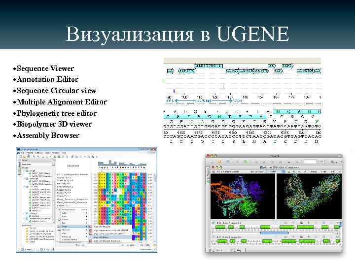 Визуализация в UGENE • Sequence Viewer • Annotation Editor • Sequence Circular view •