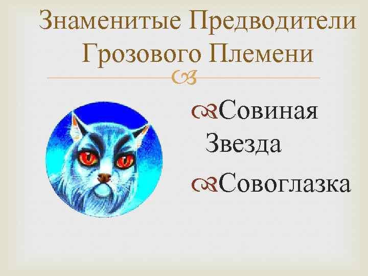 Знаменитые Предводители Грозового Племени Совиная Звезда Совоглазка