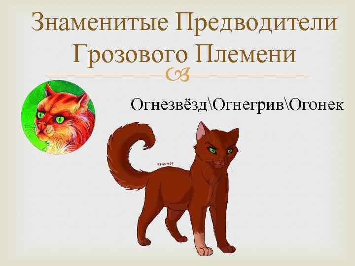 Знаменитые Предводители Грозового Племени ОгнезвёздОгнегривОгонек