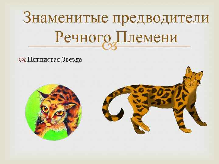 Знаменитые предводители Речного Племени Пятнистая Звезда