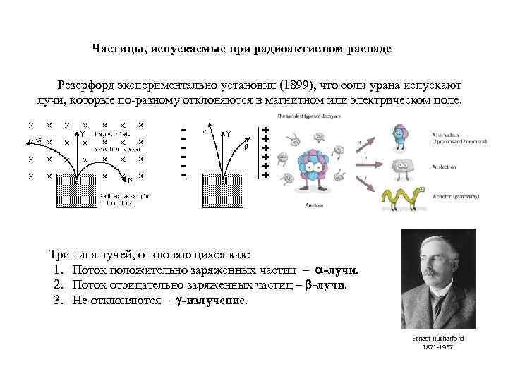 Частицы, испускаемые при радиоактивном распаде Резерфорд экспериментально установил (1899), что соли урана испускают лучи,
