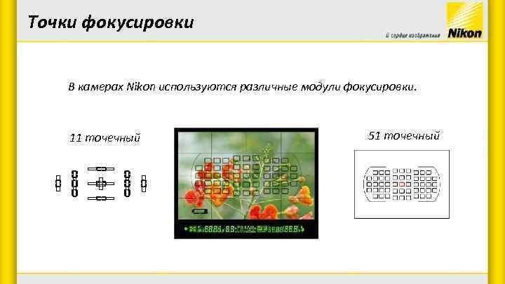 Точки фокусировки В камерах Nikon используются различные модули фокусировки. 11 точечный 51 точечный
