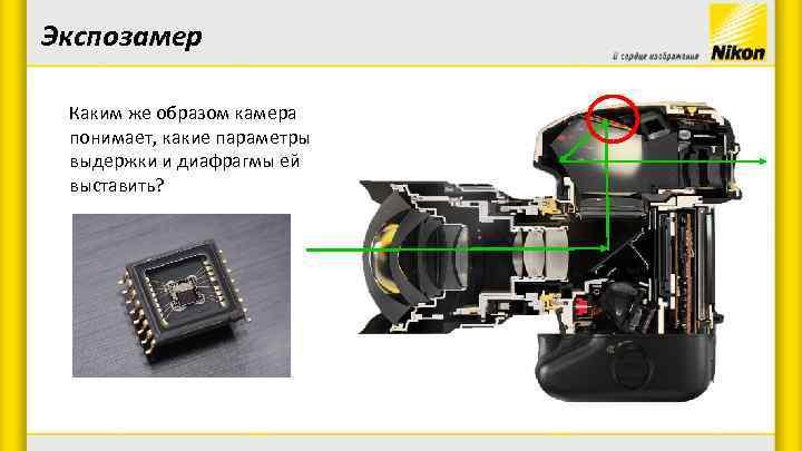 Экспозамер Каким же образом камера понимает, какие параметры выдержки и диафрагмы ей выставить?