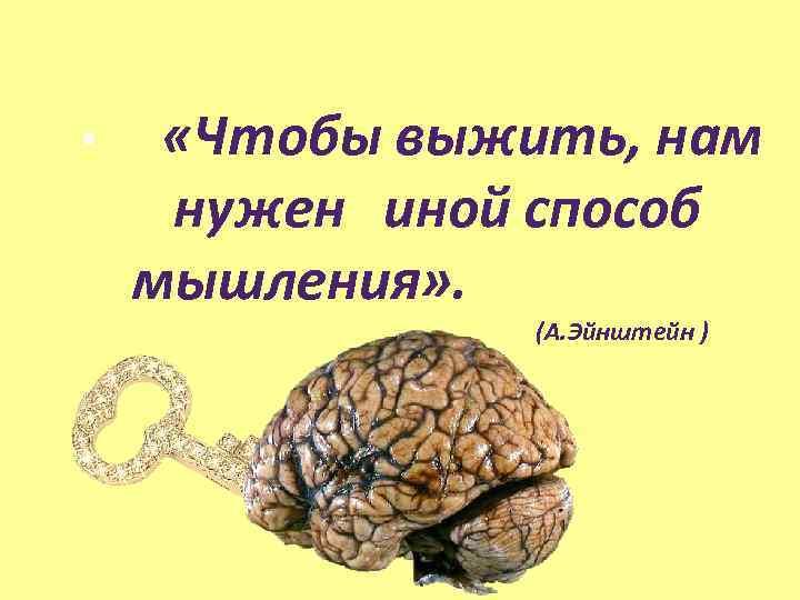 • «Чтобы выжить, нам нужен иной способ мышления» . (А. Эйнштейн )
