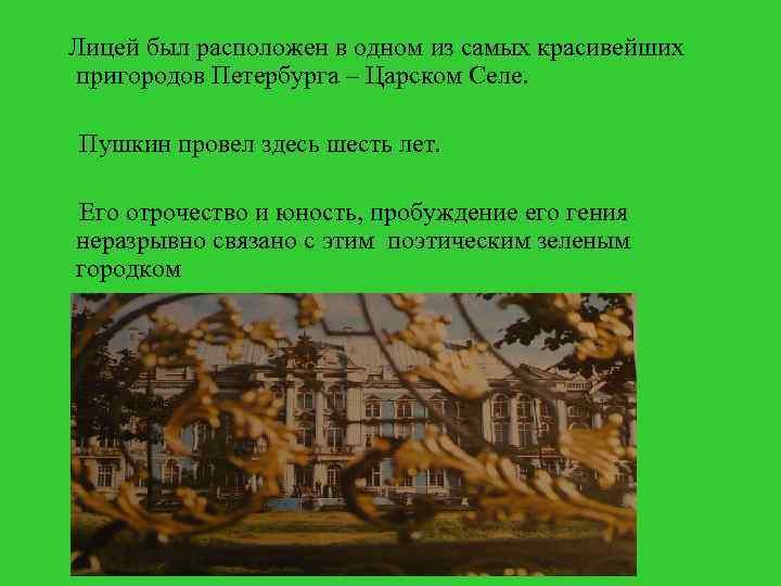Лицей был расположен в одном из самых красивейших пригородов Петербурга – Царском Селе. Пушкин