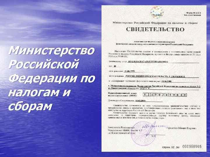 Министерство Российской Федерации по налогам и сборам