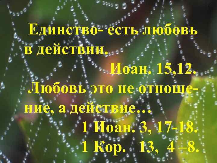 Единство- есть любовь в действии. Иоан. 15, 12. Любовь это не отношение, а действие…