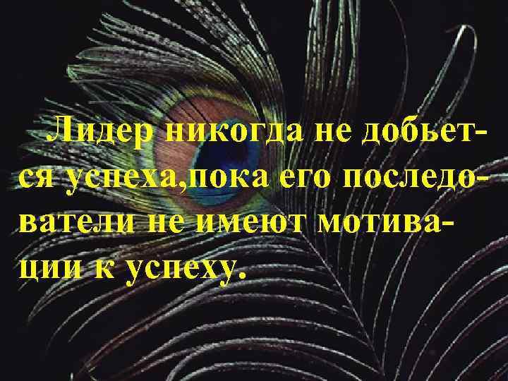 Лидер никогда не добьется успеха, пока его последователи не имеют мотивации к успеху.