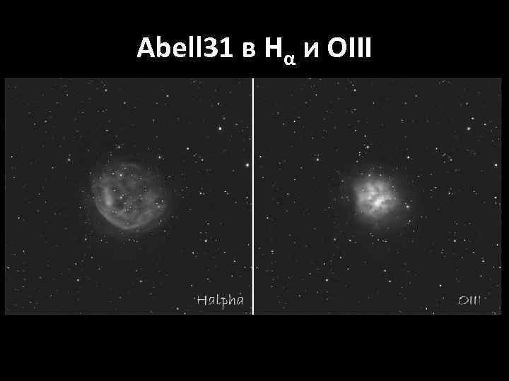 Abell 31 в Hα и OIII
