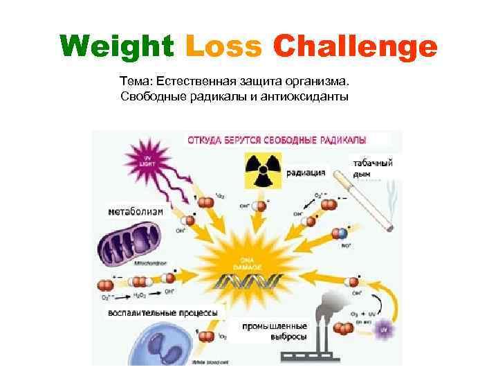 Weight Loss Challenge Тема: Естественная защита организма. Свободные радикалы и антиоксиданты