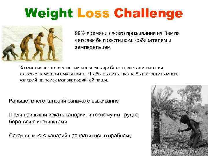 Weight Loss Challenge 99% времени своего проживания на Земле человек был охотником, собирателем и
