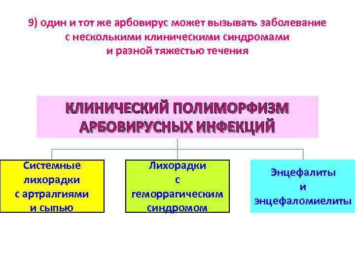 9) один и тот же арбовирус может вызывать заболевание с несколькими клиническими синдромами и