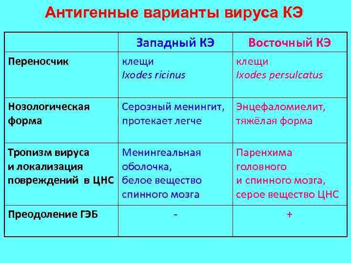 Антигенные варианты вируса КЭ Западный КЭ Восточный КЭ Переносчик клещи Ixodes ricinus Нозологическая форма