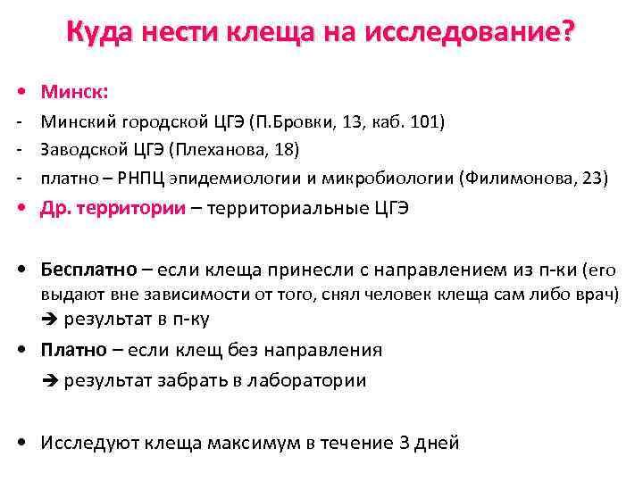 Куда нести клеща на исследование? • Минск: - Минский городской ЦГЭ (П. Бровки, 13,