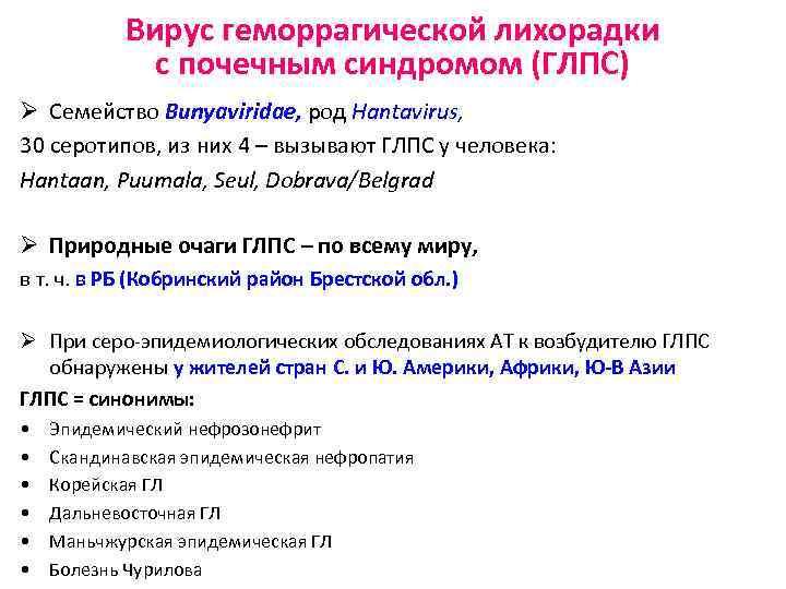 Вирус геморрагической лихорадки с почечным синдромом (ГЛПС) Ø Семейство Bunyaviridae, род Hantavirus, 30 серотипов,