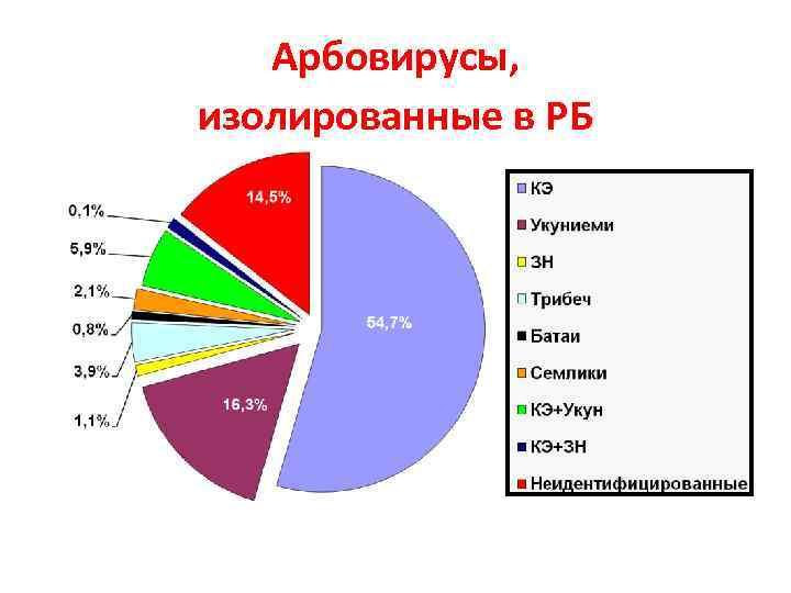 Арбовирусы, изолированные в РБ