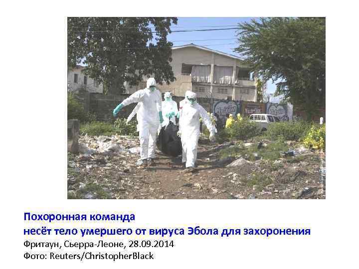 Похоронная команда несёт тело умершего от вируса Эбола для захоронения Фритаун, Сьерра-Леоне, 28. 09.