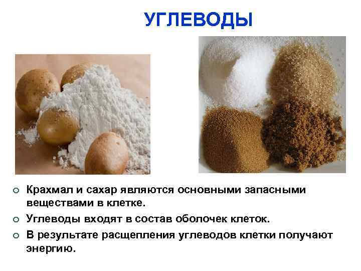 УГЛЕВОДЫ Крахмал и сахар являются основными запасными веществами в клетке. Углеводы входят в состав