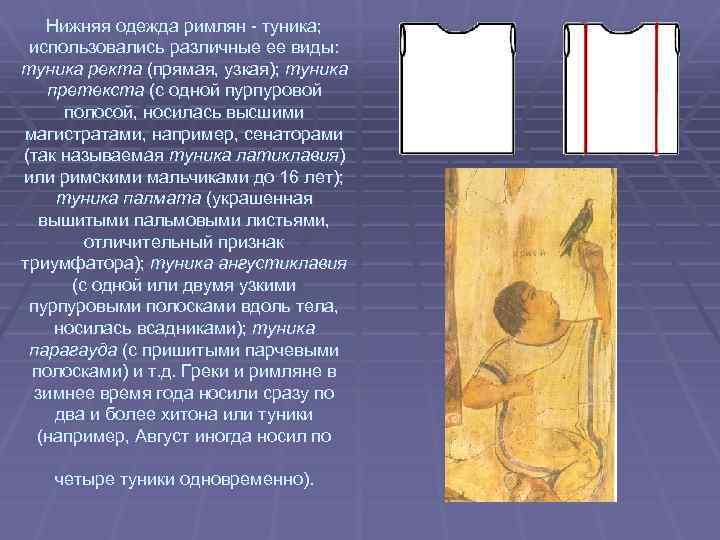 Нижняя одежда римлян - туника; использовались различные ее виды: туника ректа (прямая, узкая); туника