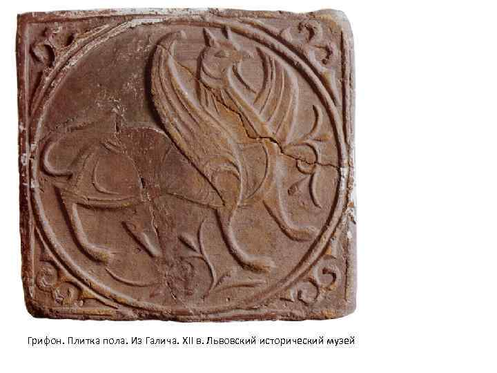 Грифон. Плитка пола. Из Галича. XII в. Львовский исторический музей
