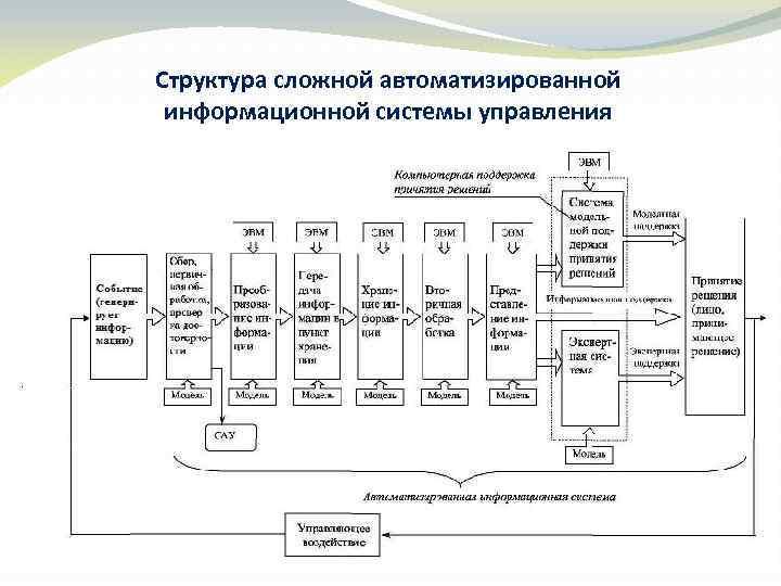 Структура сложной автоматизированной информационной системы управления