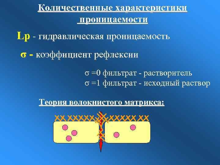 Количественные характеристики проницаемости Lp - гидравлическая проницаемость σ - коэффициент рефлексии σ =0 фильтрат