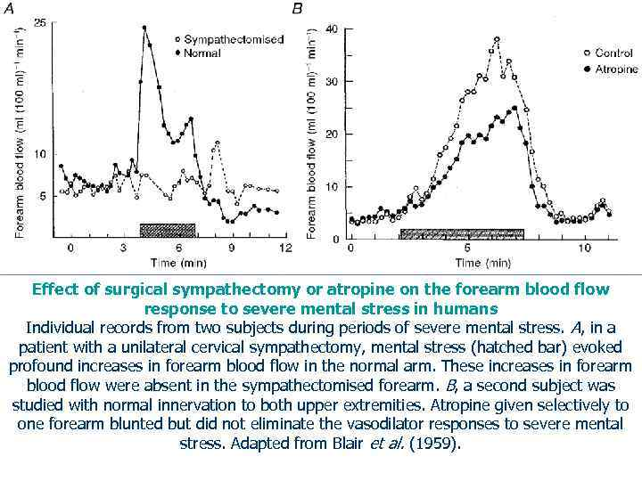 Effect of surgical sympathectomy or atropine on the forearm blood flow response to severe