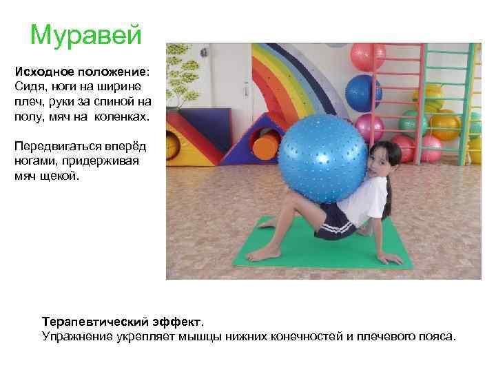 Муравей Исходное положение: Сидя, ноги на ширине плеч, руки за спиной на полу, мяч