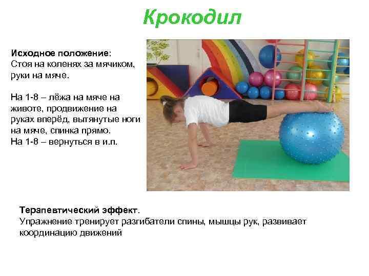 Крокодил Исходное положение: Стоя на коленях за мячиком, руки на мяче. На 1 -8
