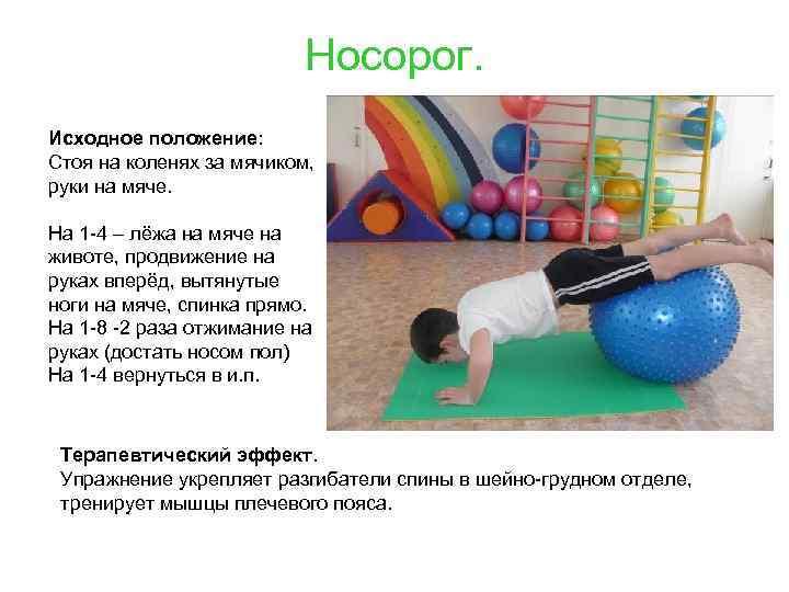 Носорог. Исходное положение: Стоя на коленях за мячиком, руки на мяче. На 1 -4