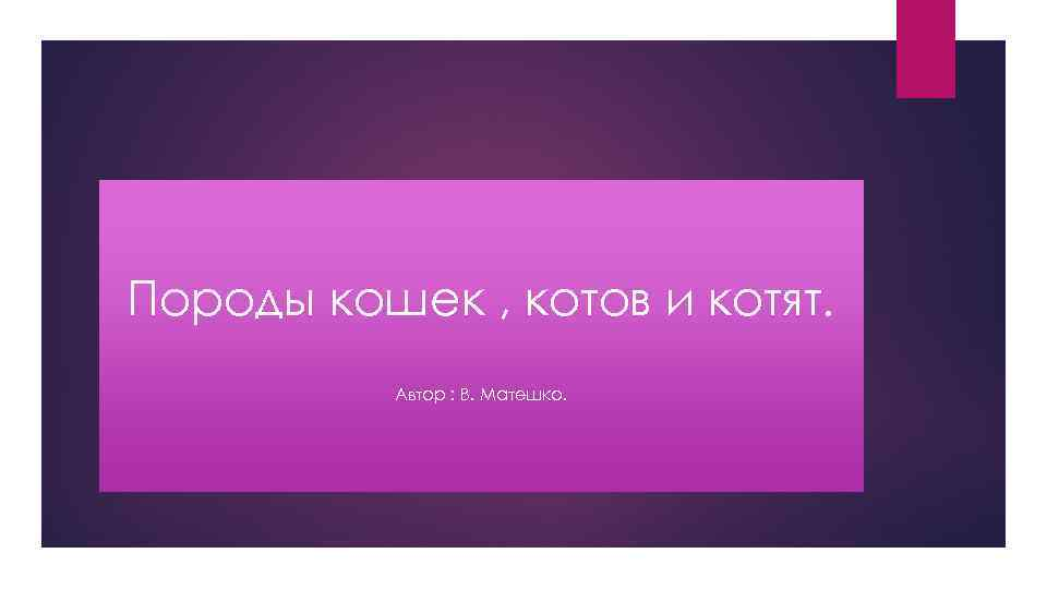 Породы кошек , котов и котят. 5 Автор : В. Матешко.