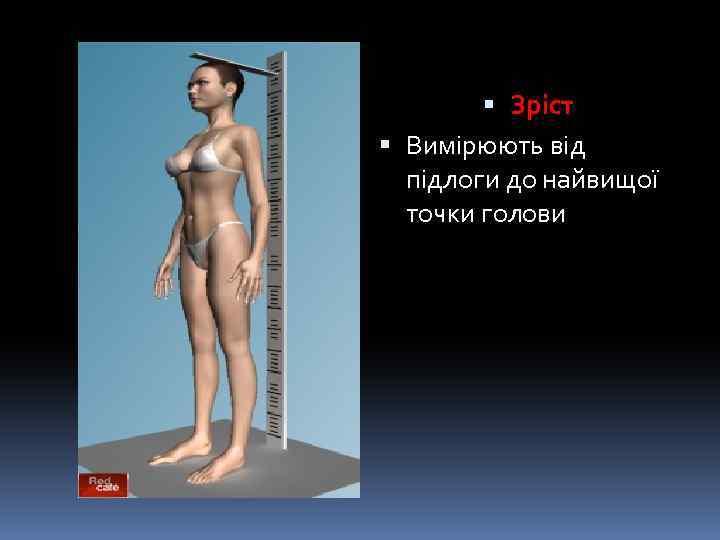 Зріст Вимірюють від підлоги до найвищої точки голови