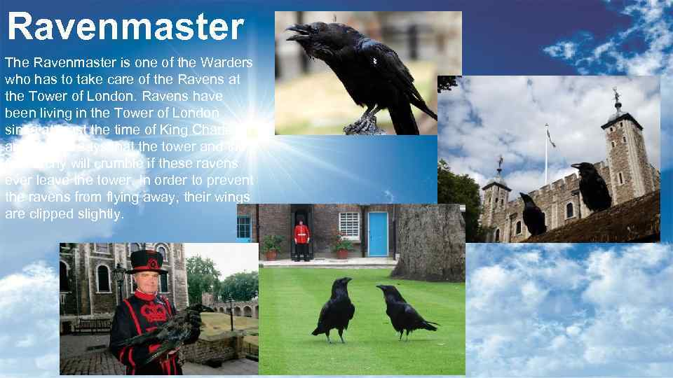 Ravenmaster The Ravenmaster is one of the Warders who has to take care of