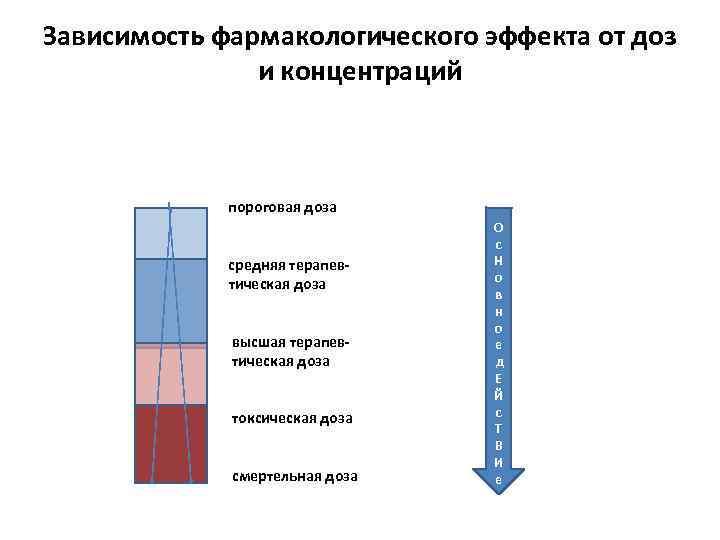 Зависимость фармакологического эффекта от доз и концентраций пороговая доза средняя терапевтическая доза высшая терапевтическая
