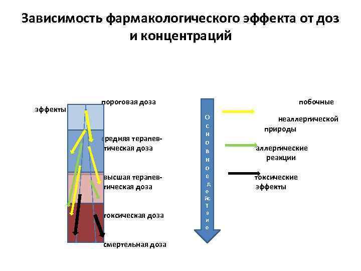 Зависимость фармакологического эффекта от доз и концентраций эффекты пороговая доза средняя терапевтическая доза высшая