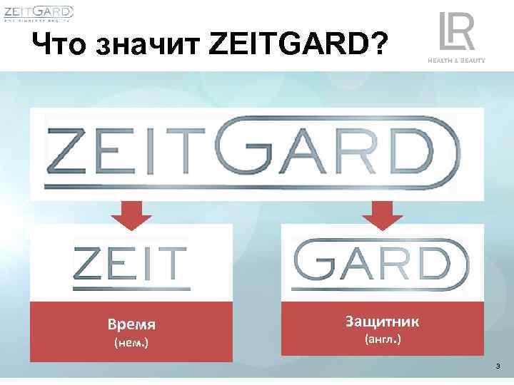 Что значит ZEITGARD? Время (нем. ) Защитник (англ. ) 3