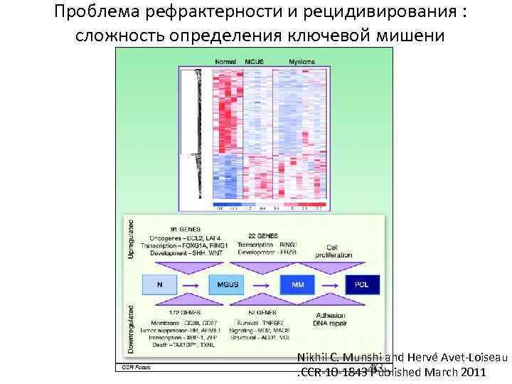 Проблема рефрактерности и рецидивирования : сложность определения ключевой мишени Nikhil C. Munshi and Hervé