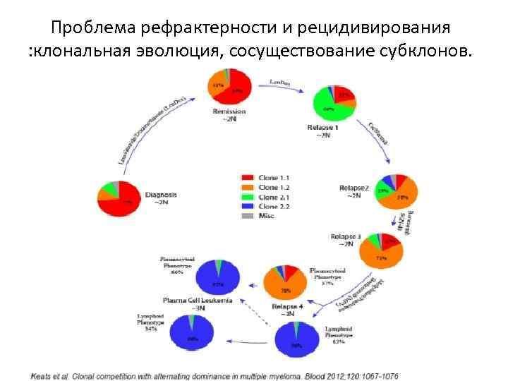 Проблема рефрактерности и рецидивирования : клональная эволюция, сосуществование субклонов.