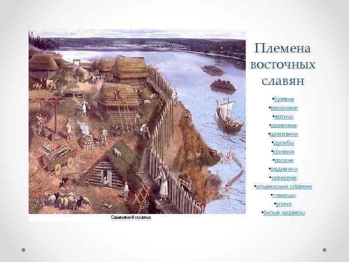 Племена восточных славян • бужане • волыняне • вятичи • древляне • дреговичи •