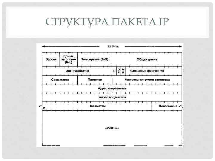 СТРУКТУРА ПАКЕТА IP