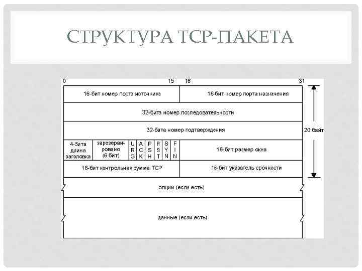 СТРУКТУРА TCP-ПАКЕТА