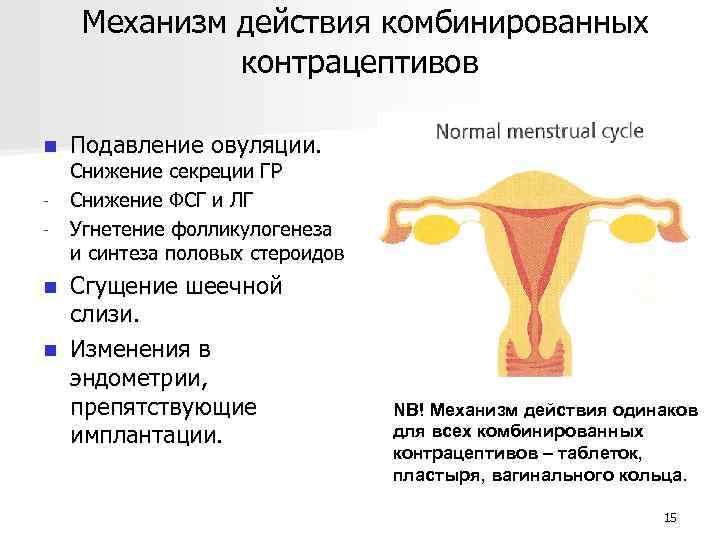 Механизм действия комбинированных контрацептивов n - Подавление овуляции. Снижение секреции ГР Снижение ФСГ и