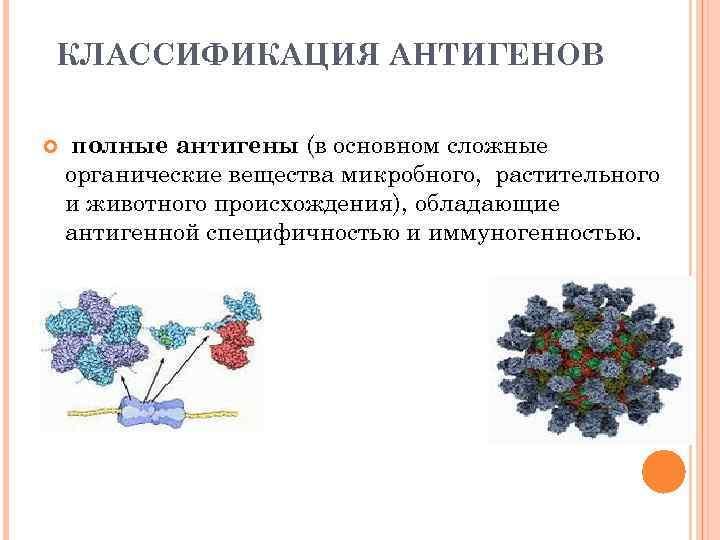 КЛАССИФИКАЦИЯ АНТИГЕНОВ полные антигены (в основном сложные органические вещества микробного, растительного и животного происхождения),