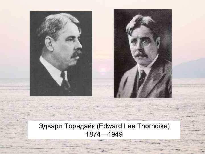 Эдвард Торндайк (Edward Lee Thorndike) 1874— 1949