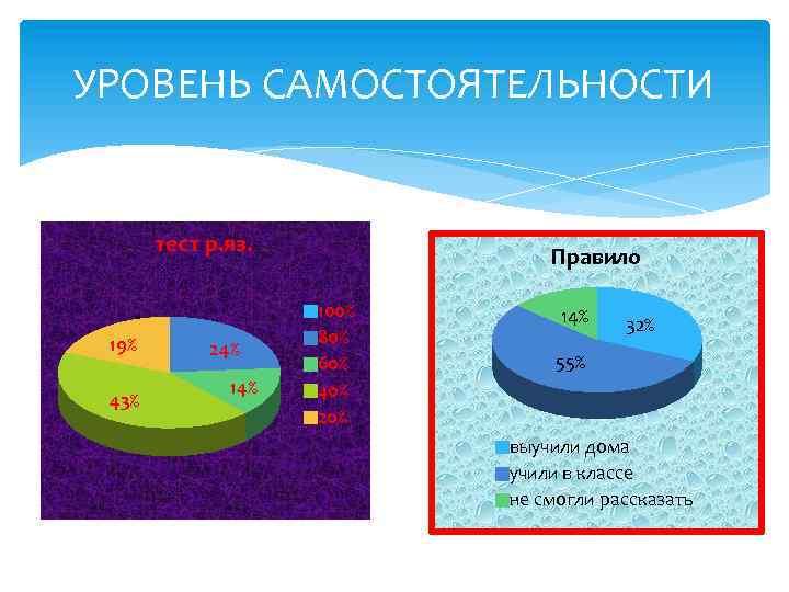 УРОВЕНЬ САМОСТОЯТЕЛЬНОСТИ тест р. яз. 19% 43% 24% 14% Правило 100% 80% 60% 40%