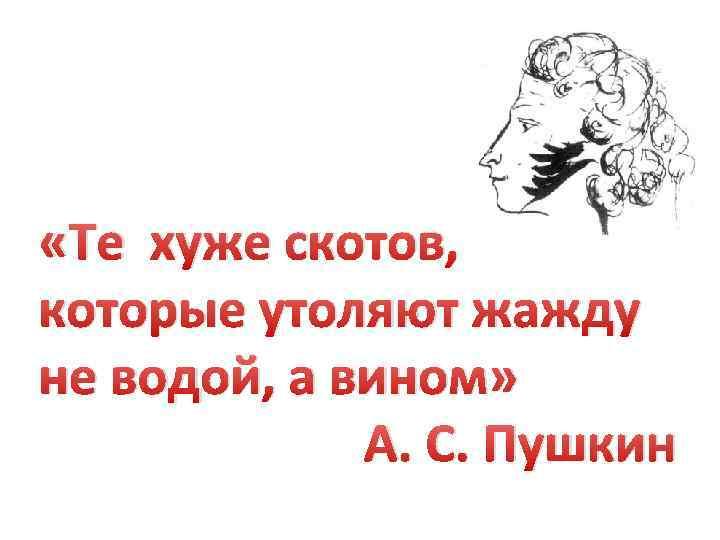 «Те хуже скотов, которые утоляют жажду не водой, а вином» А. С. Пушкин